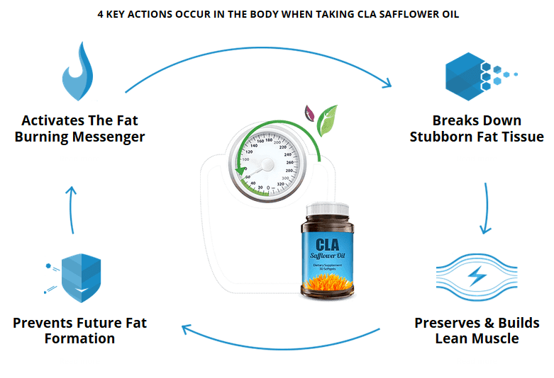 How does CLA Safflower Oil Supplement work