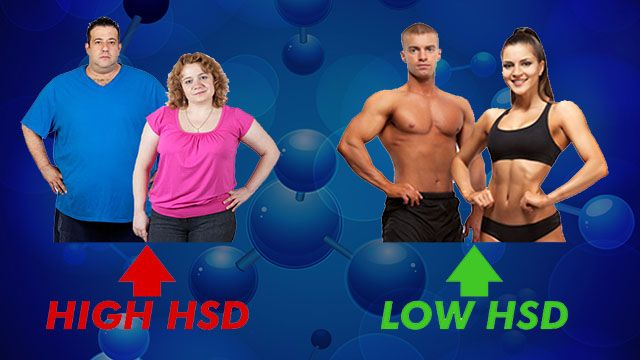 HSD for weight loss